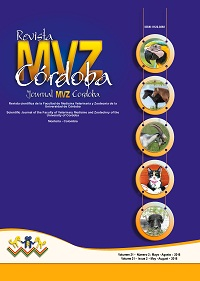 Revista MVZ